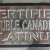 Double Canadian Platinum Closeup (Photo)